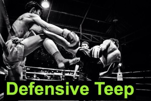 Teep Technique to Keep Your Opponent at Bay