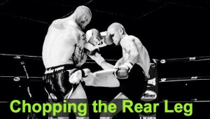 Chopping the Rear Leg – TKO Technique