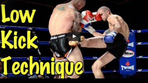 Low Kick Technique – Judging Distance