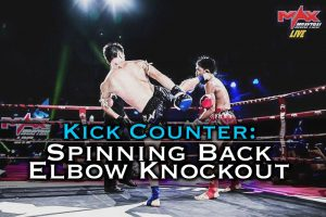 Spinning Elbow Knockout Counter to the Roundhouse Kick