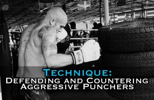 Defending and Countering [Wild] Aggressive Punchers